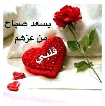 يسعد صباح من عزهم قلبي