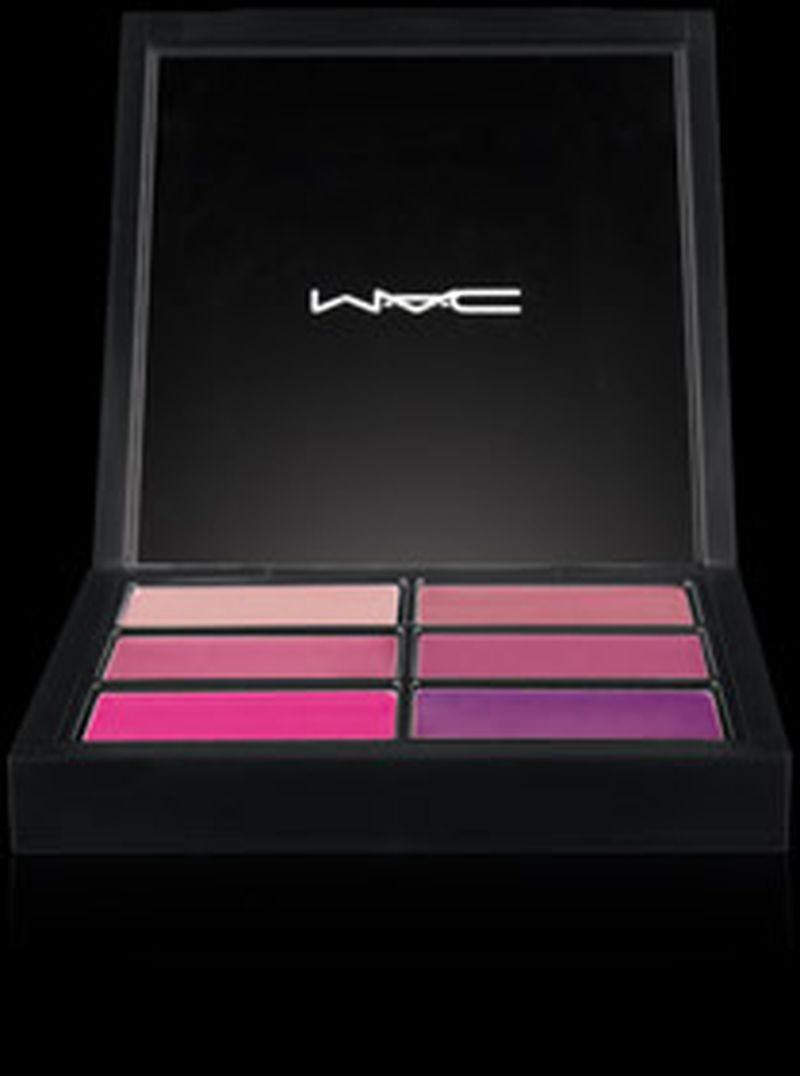Pro Lip Palette التي تحتوي على 6 ألوان من تدرجات اللون الزهري!